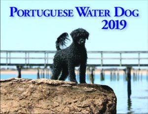2019 PWD Calendar